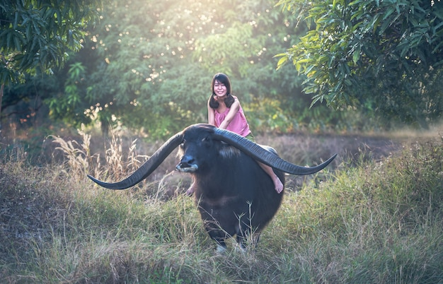 Glücklicher asiatinlandwirt mit einem büffel auf dem gebiet