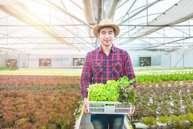 Glücklicher asiatischer landwirtgärtnermannhandgriffkorb des frischen grünen organischen gemüses im wasserkulturbiohof des gewächshauses