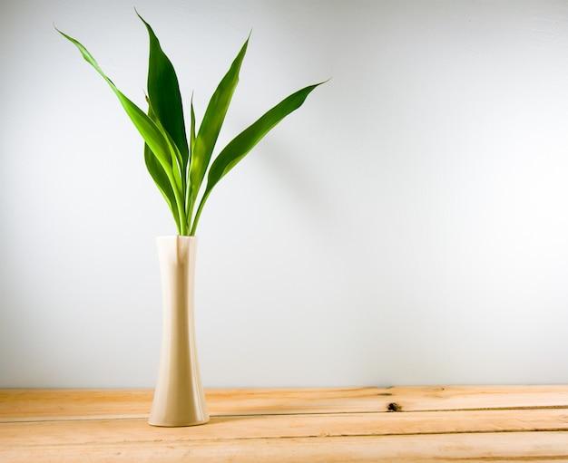 Glücklicher bambus (dracaena-sanderiana) in einem crean vase auf hölzernem hintergrund