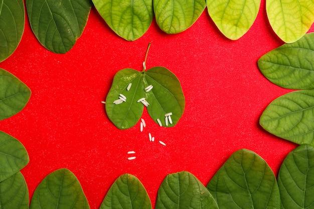 Glücklicher dussehra-rahmen mit grünem blatt und reis