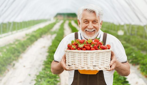 Glücklicher erwachsener mann, der korb mit erdbeeren hält
