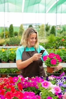 Glücklicher florist, der foto von petunienpflanzen auf handy nimmt