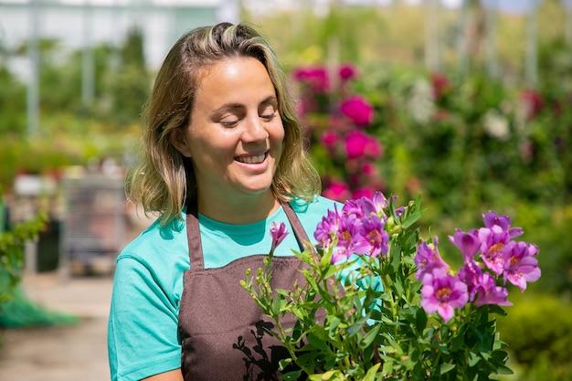 Glücklicher inspirierter weiblicher florist, der im gewächshaus steht, topfpflanze hält, lila blumen betrachtet und lächelt. professionelles porträt, kopierraum. gartenarbeit oder botanikkonzept.