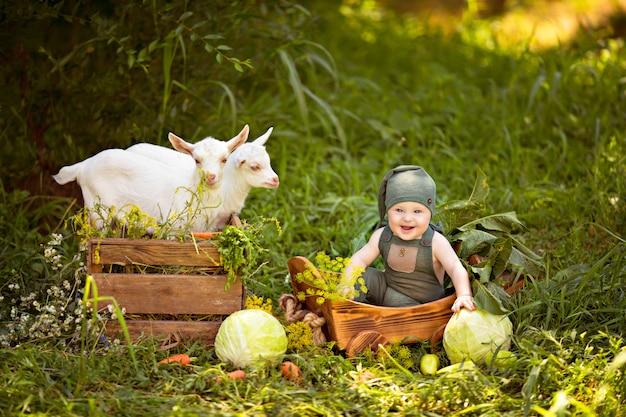 Glücklicher kinderjunge mit weißen ziegen im frühjahr auf natur im dorf mit kräutern und gemüse
