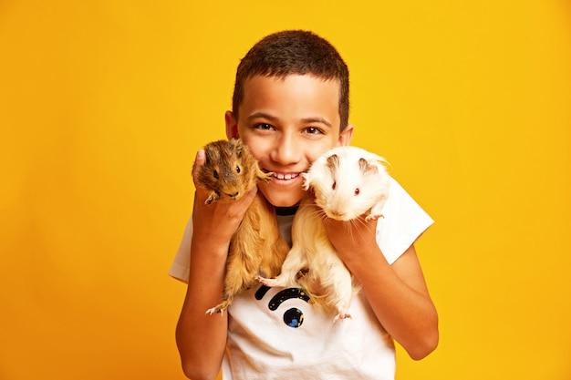 Glücklicher kleiner junge mit netten meerschweinchen