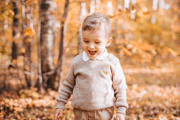 Glücklicher lächelnder junge im park mit herbstlaub