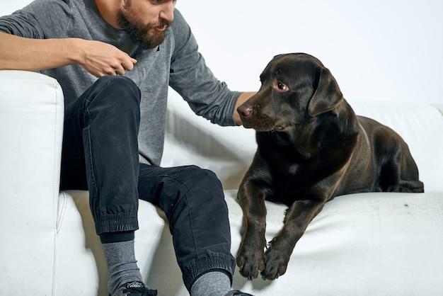 Quarantäne Mit Hund