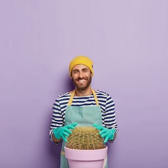 Glücklicher mann züchtet zu hause sehr große kakteen, berührt saftige pflanzen, trägt gummihandschuhe, uniform, interessiert sich für botanik