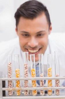 Glücklicher wissenschaftler, der gefäße von mais und von kern betrachtet