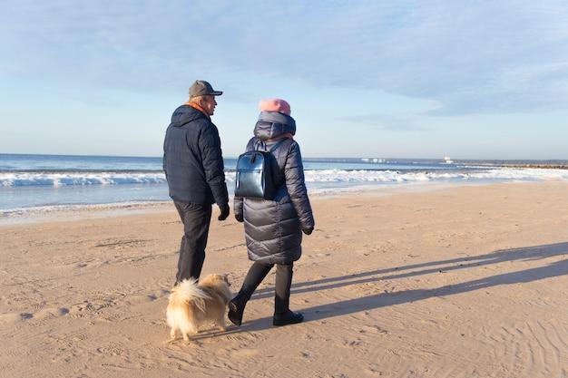 Glückliches älteres älteres reizendes paar verliebt in haustier pommerschen spitzhund, welpe, der entlang strand, sand geht und guten sonnigen wintertag genießt. kalte nordsee, golf mit eis. rückansicht.