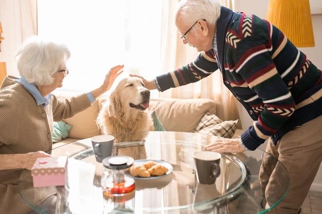 Glückliches älteres paar mit haustier