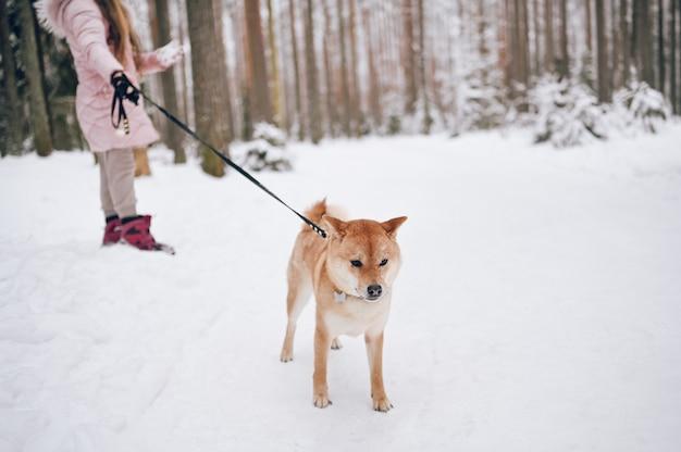 Glückliches familienwochenende - kleines süßes mädchen in rosa warmer oberbekleidung, die spaß mit rotem shiba inu hund im schneeweißen kalten winterwald im freien geht