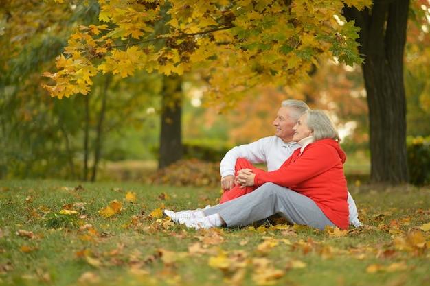 Glückliches fittes älteres paar, das im herbstpark trainiert