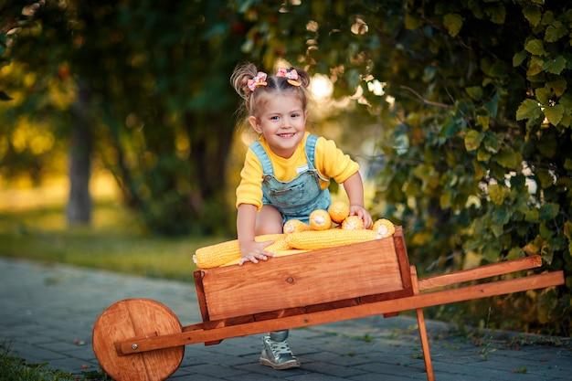 Glückliches kind mit gelben maiskolben in der schubkarre. schönes baby mit maiskolben. glückliches kind. herbsternte in der hölzernen schubkarre.