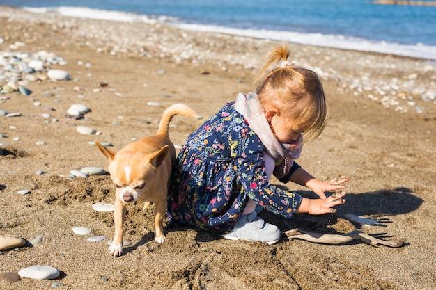 Glückliches kleines mädchen, das mit hund spielt