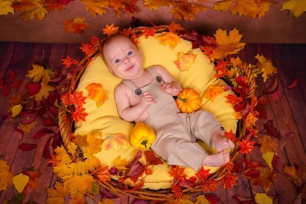 Glückliches neugeborenes, das auf herbstblättern liegt.
