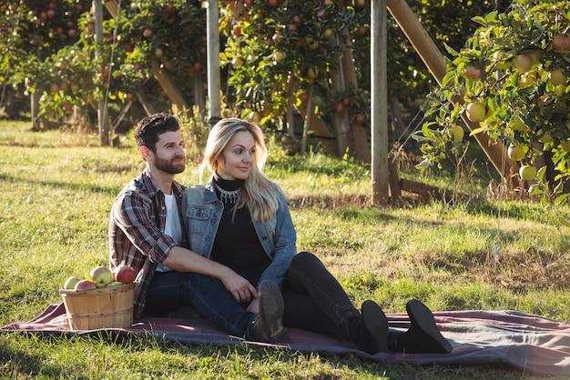 Glückliches paar, das zusammen auf einer decke im apfelgarten sitzt