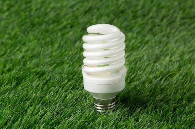Glühbirne auf gras
