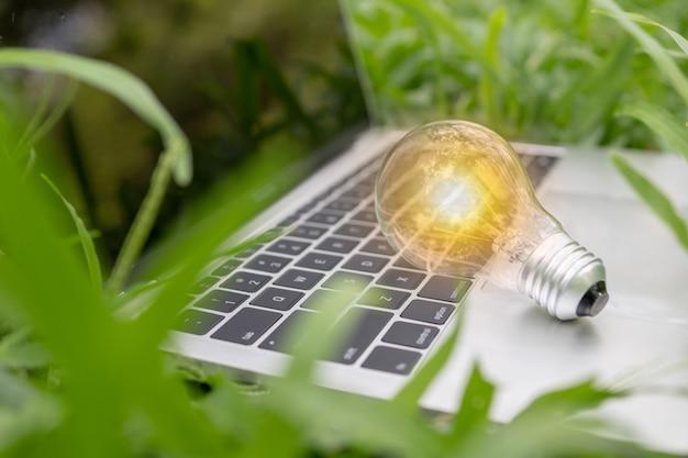 Glühbirne auf laptop im park