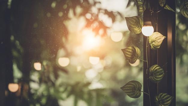 Glühbirne dekor am fenster
