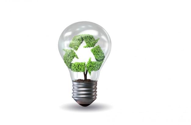 Glühbirne in grüner umgebung
