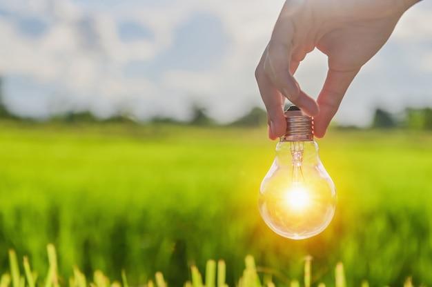 Glühbirne leuchtet im freien zur hand