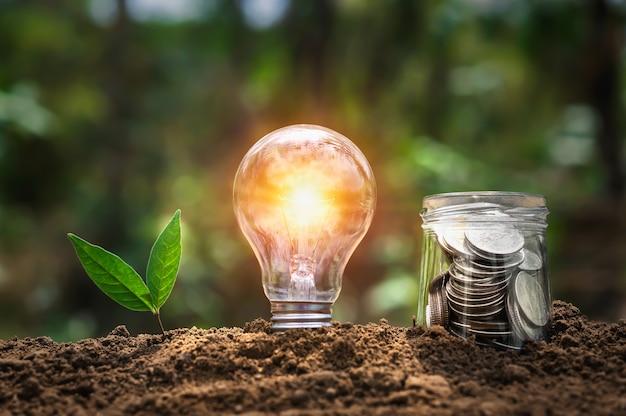 Glühbirne mit pflanzenwachstum und geld in krugglas auf boden in der natur