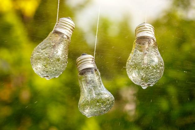 Glühbirnen hängen auf dem gesicht nass vom regen auf einem natürlichen hintergrund.