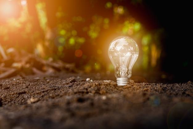 Glühbirnenwachstum aus dem boden. - neues ideen- und innovationskonzept.