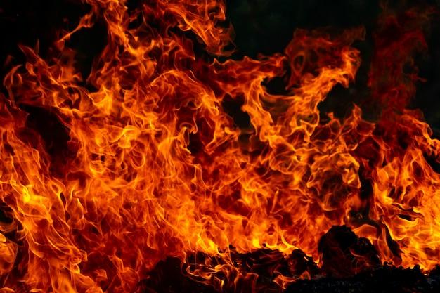 Glühendes brennen der abstrakten feuerflamme auf schwarzer dunkelheit