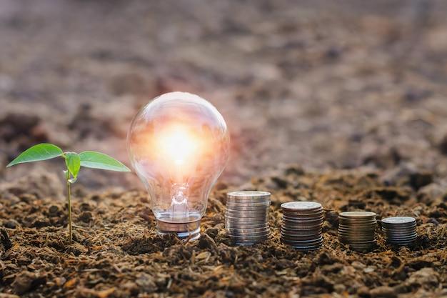 Glühlampe mit kleinem baum- und geldstapel auf boden in der natur. energie sparen