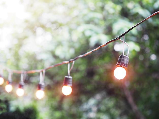 Glühlampe und draht, die im garten hängen.