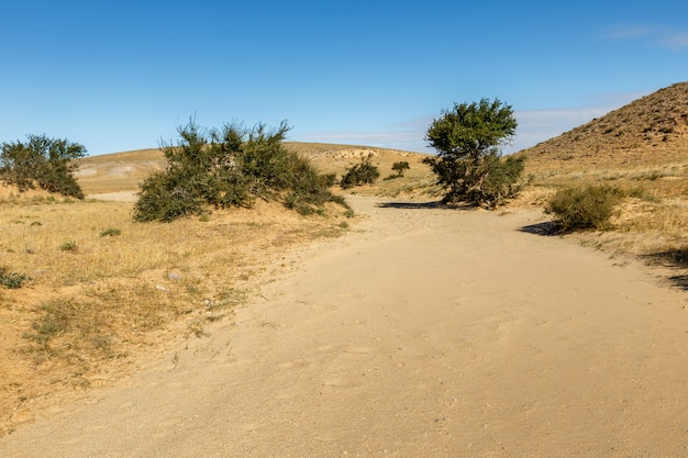 Gobi wüste mongolei