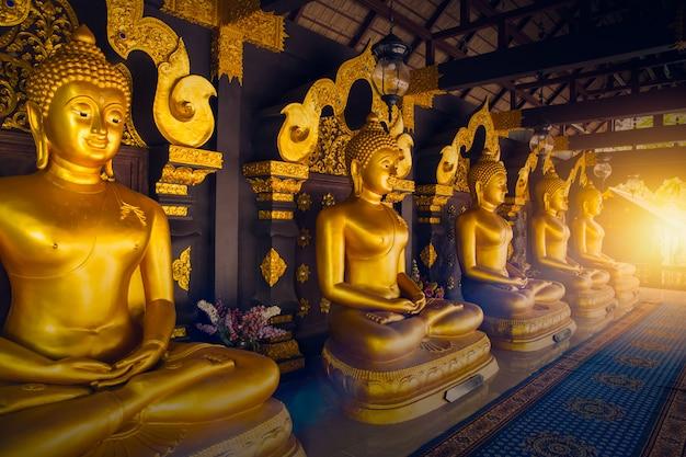 Goldene buddha-reihe in thailand-tempel an lampang-provinz