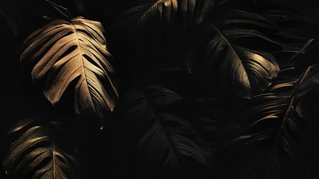 Goldene monstera hinterlässt hintergrunddesign-ressource