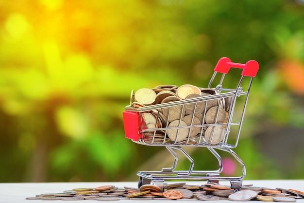 Goldene und silberne münze in der einkaufskarte auf grün.