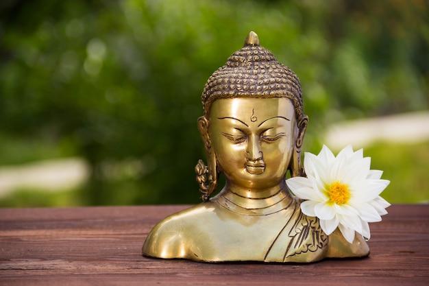 Goldener buddha und weiße asterblume. chinesische buddha-skulptur und weiße dahlienblume auf natürlichem unscharfem grünem hintergrund. speicherplatz kopieren