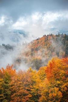 Goldener herbst in bergwaldlandschaft