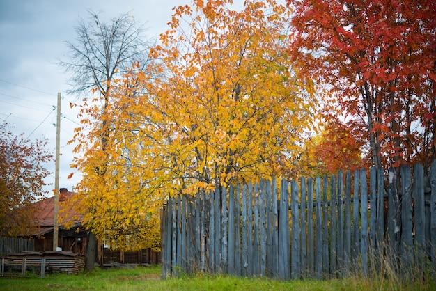 Goldener herbst in ländlichen gebieten, russland, ural