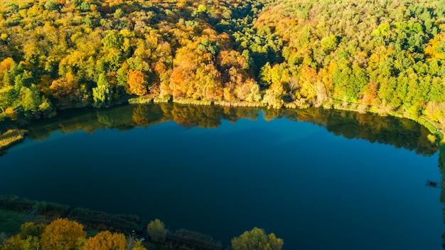 Goldener herbsthintergrund, luftdrohnenansicht des waldes mit gelben bäumen und schöner seelandschaft von oben, kiew, goloseevo-wald, ukraine