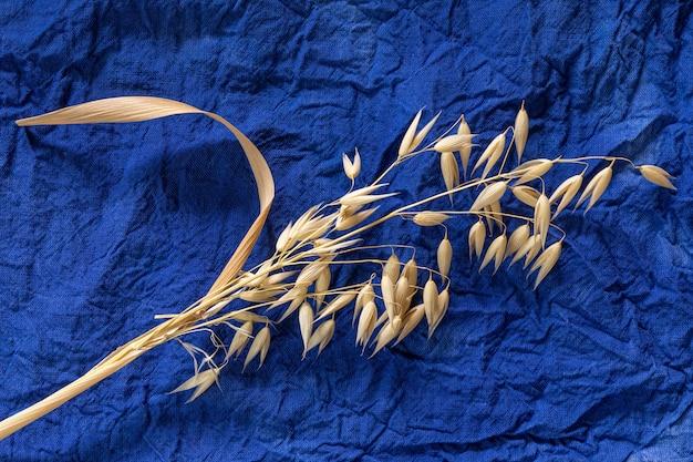 Goldener reifer hafer auf dunkelblauem baumwollstoff