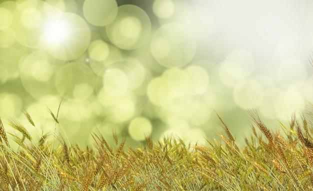 Goldener weizen gegen einen defocussed hintergrund