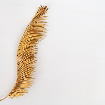 Goldenes farbiges blatt der palme. bemalte metallische pflanzen. kreativer sommerhintergrund mit kopienraum.