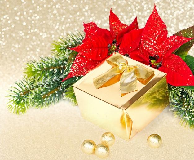 Goldenes geschenk und rote weihnachtsblumenpoinsettia