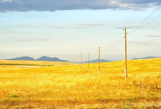 Goldenes gras vor dem hintergrund entfernter berge im sommer unter blauem bewölktem himmel. sibirien, russland