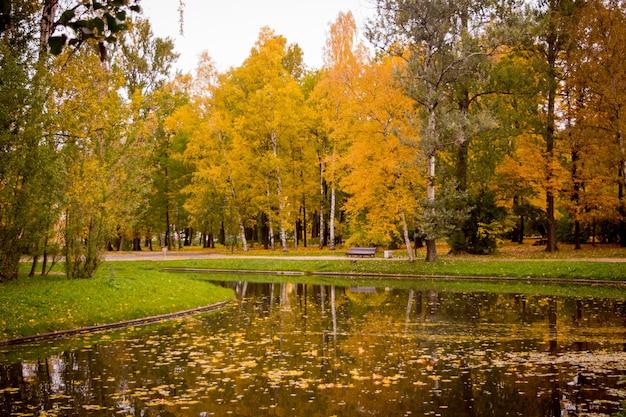 Goldenes laub des herbstparks