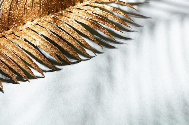 Goldpalmenblätter und schatten