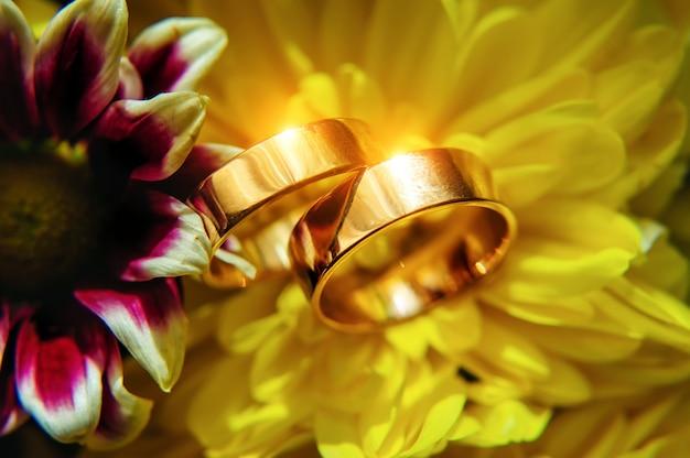 Goldringe des brautpaares leuchten und reflektieren das licht