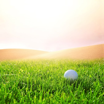 Golfball auf dem golfplatz.