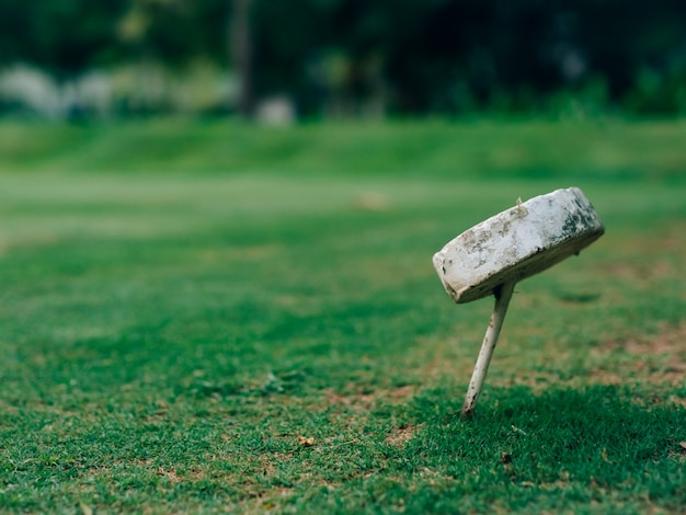 Golflochsymbol auf dem grünen feld